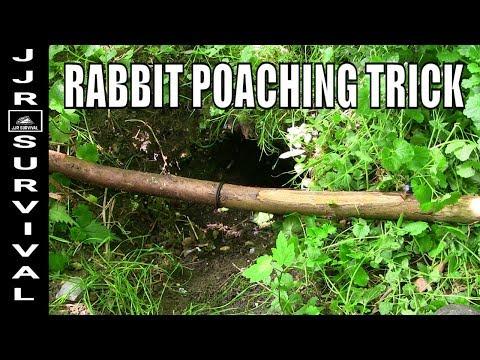 Rabbit Poaching Trick
