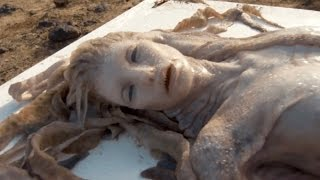 10 Mysterious Washed Up CREATURES