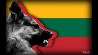 Литва - информация о стране и русофобы (не все)