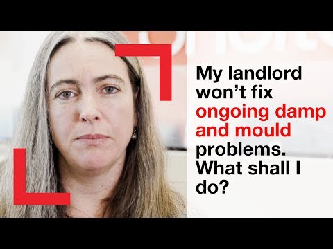 My landlord won't fix ongoing damp and mould problems. What shall I do?   housing advice   Shelter