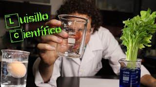 EXPERIMENTOS CASEROS SORPRENDENTES 😱   Luisillo El Científico 👨🏻🔬🧪