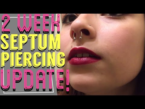 Septum piercing 2 week update!!