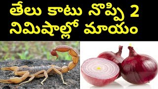 Download First Aid Treatment for Scorpion Bit in Telugu || Wich will Reduce The scorpion Bit paint naturally Video
