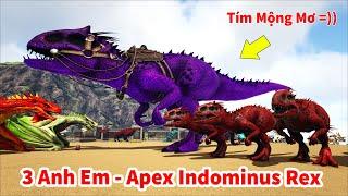 ARK: Ragnarok Mod #16 - Tiến Hóa Khủng Long Bạo Chúa Infernal Indominus Rex, Tím Mộng Mơ =))