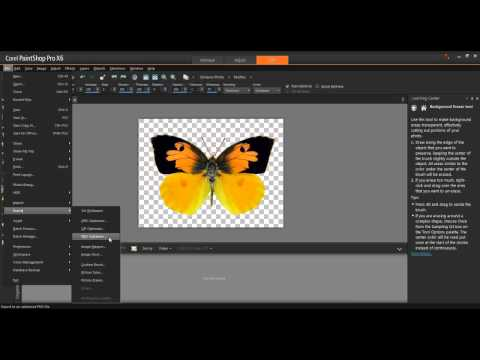 Working with Transparency in Corel PaintShop Pro X6