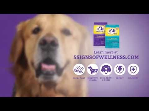 Wellness® - Eyes, Teeth & Gums Health