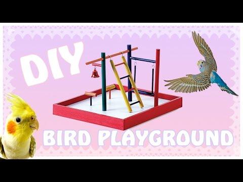 ☆DIY Bird Playground ☆|| Watch me Build