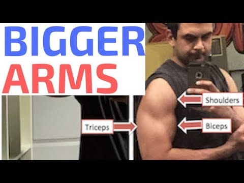 How to Get Bigger Arms - Biceps, Triceps and Shoulders