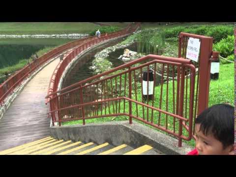 Adriel at MacRitchie Reservoir Park