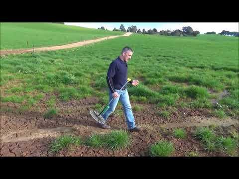 Using a plate meter to measure pasture   TIA Dairy Team