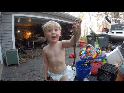 Toddler catches snake - Found boat in garage - Baby throws up on me.