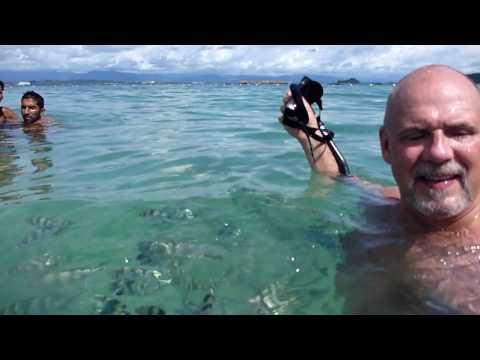 Fish bite Thomas nipple.MTS