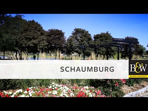 Chicago Neighborhoods - Schaumburg