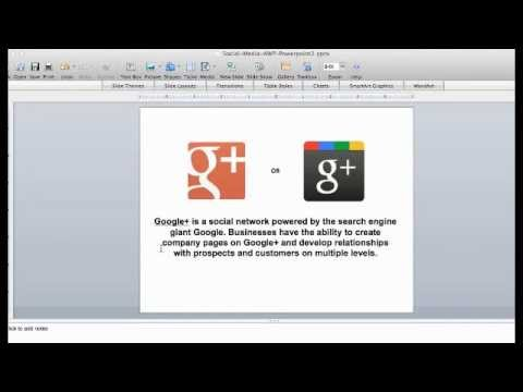 What Is Google Plus: Reasons Why You Need Google Plus For Business