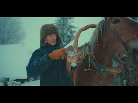 Grandfather. Part I. Winter - Horse Logging