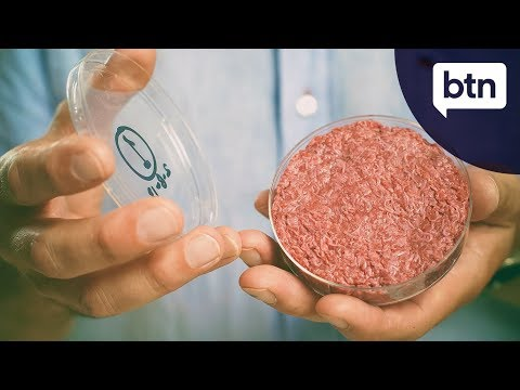 Lab Grown Meat - Behind the News