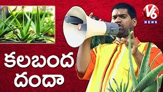 Bithiri Sathi On Drug Consumers Consumption Of Aloe Vera Juice Before Investigation | Teenmaar News