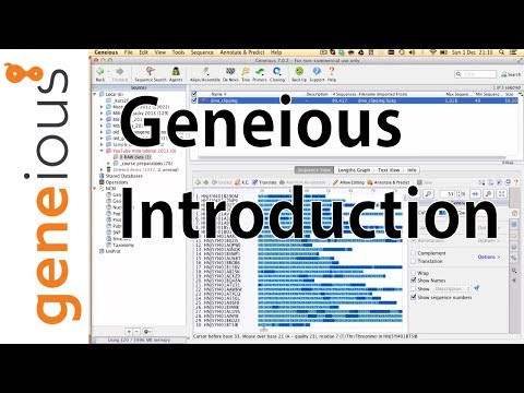 Geneious Introduction: Interface and importing (Mitogenome Tutorial 2.4)