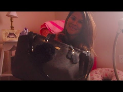 Diaper Bag | Purse for 2 under two!!