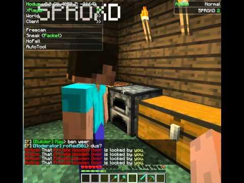 Minecraft Server Griefing