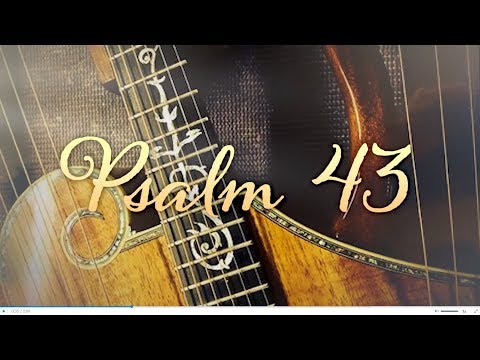 PSALM 43 - Memorize in a Month! - with PREPSTEADERS.com