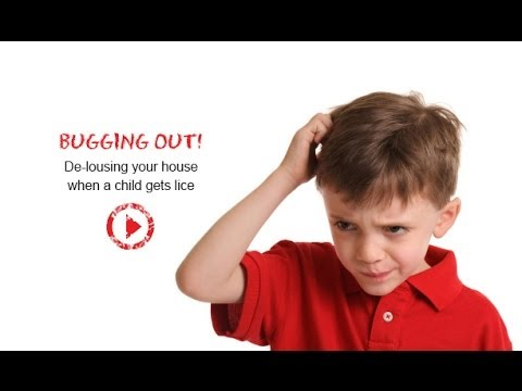 How To Prevent Lice - Amy Goldreyer, Lice Removal Expert
