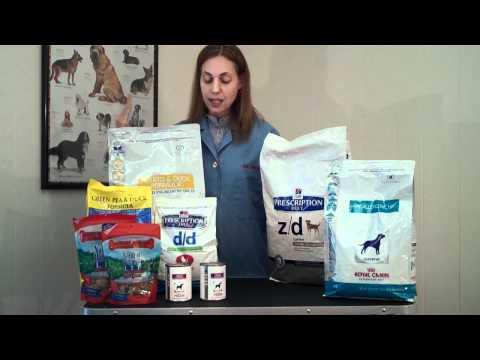 Understanding Hypoallergenic Pet Foods