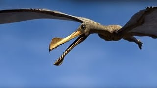 Reptiles of the Skies - Walking with Dinosaurs in HQ - BBC