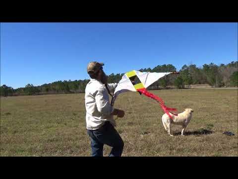 flight inception