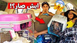 رحلة الشاليه واخذنا عبسي والبط شوفو ايش صار😭🔥