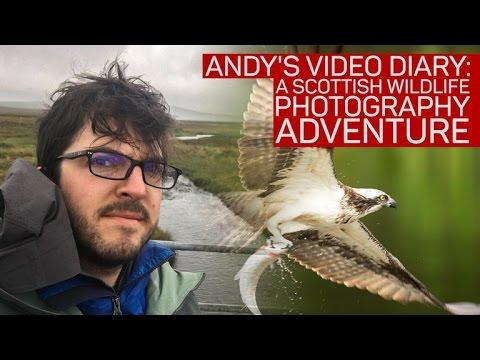 How I battled the elements to capture Scotland's wildlife on camera