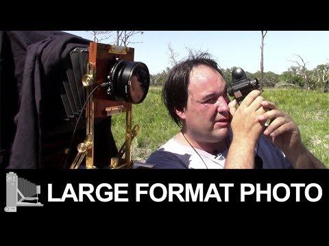 Myakka River State Park – Large Format Film Photography