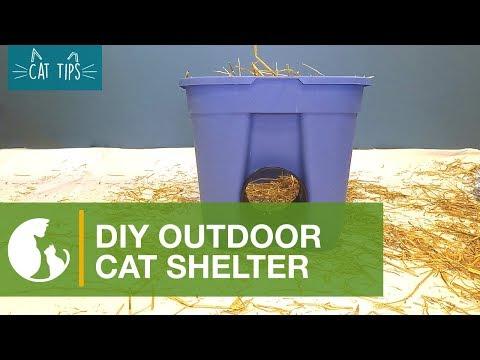 Cat Tips: DIY Cat Shelter