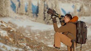 Episode 1: Peter Mather, Wildlife Photographer (Northern Influence)