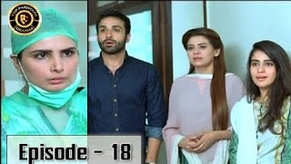 Mere Humnawa Ep 18 14th January 2017 - ARY Digital Top Pakistani Dramas
