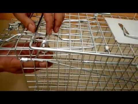 TRAP HUMANE POSSUM CAGE LIVE ANIMAL CATCH FERAL CAT RABBIT HARE BIRD BAIT RAT