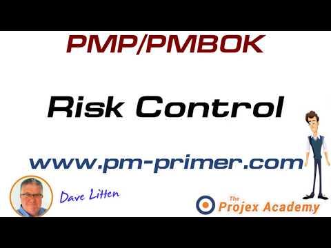 pmp pmbok risk control