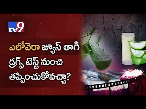 Aloe Vera juice can clean body of Drugs ? - TV9