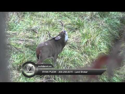 Some Random Whitetail Hunting Footage from the 2011 Hunting Season with Illinois Land Company
