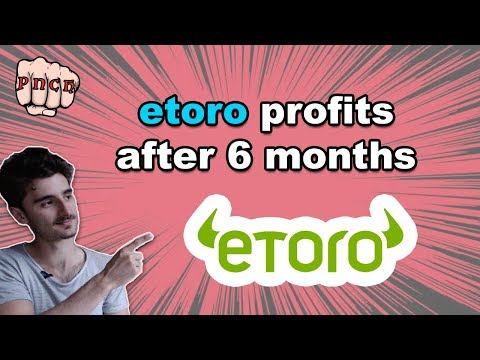 Etoro review 2017 after 6 months - social trading profits