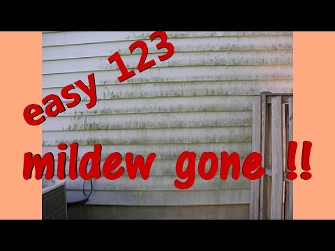 CREEPY MOLD & MILDEW ON HOUSE OR DECK? REMOVE EASY !!