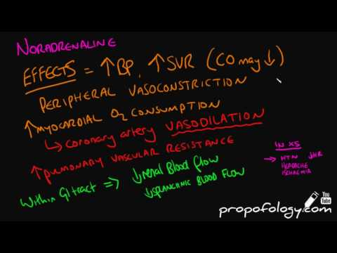 Noradrenaline/Norepinephrine in 3 Minutes! [Pharmacology]