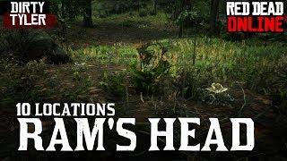 Download Rams Head Locations for Daily Challenges Red Dead Online Beta RDR2 Video