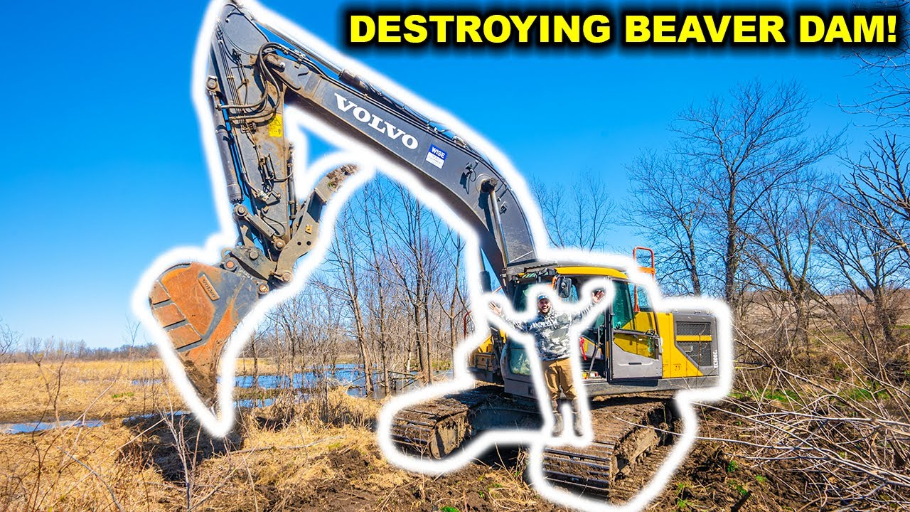 I'm Finally DESTROYING the GIANT BEAVER DAM (The Finale)