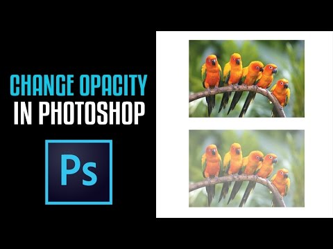 How to change The Opacity of an Image in Photoshop CS6