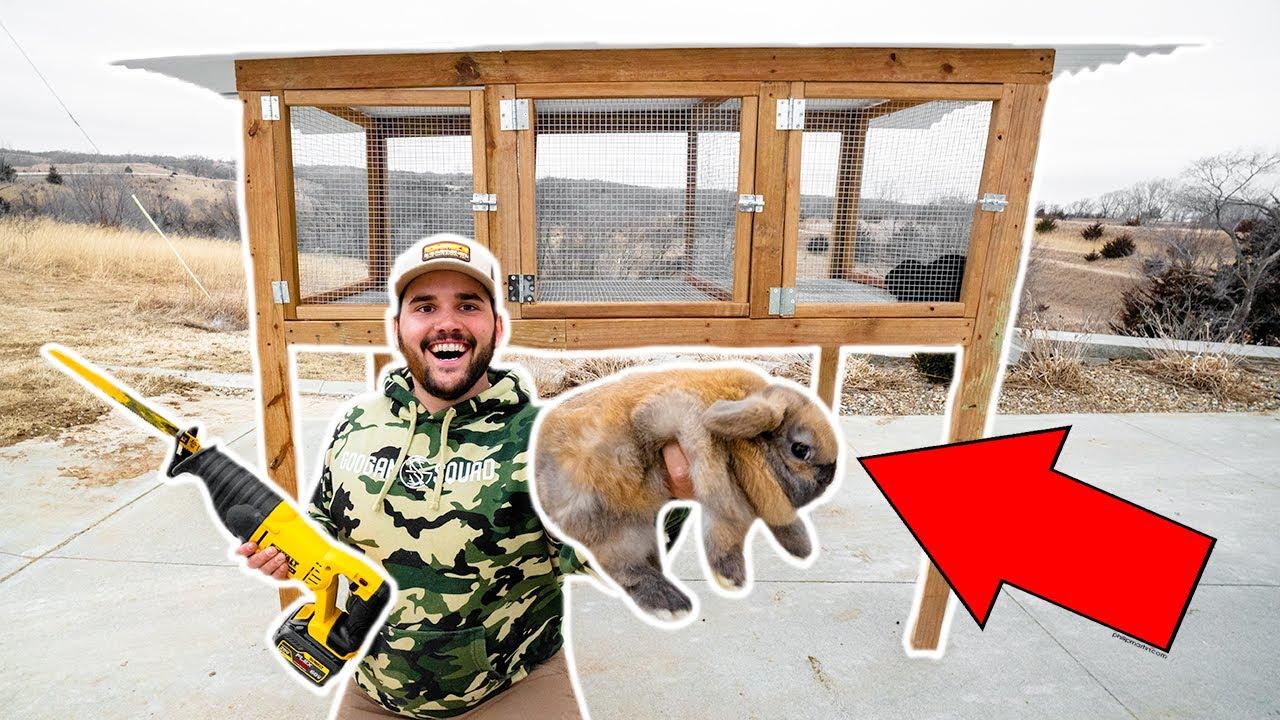 BUILDING a RABBIT HOUSE for My BACKYARD FARM!!