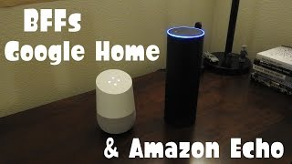Google Home & Amazon Echo, Best Friends Forever!