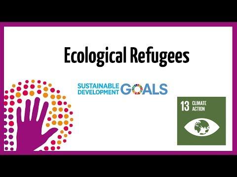 Ecological Refugees