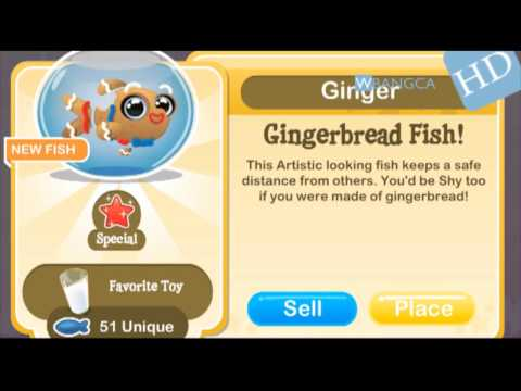 How to breed Gingerbread Fish in Fish with Attitude! WBANGCAHD! [LIMITED EDITION]