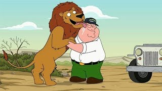 Peter Reunites With His Pet Lion In The Wild